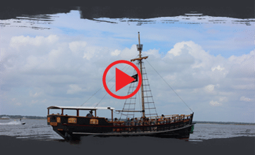 Pirate Lingo - Experience the Ultimate Pirate RidePirate Voyages